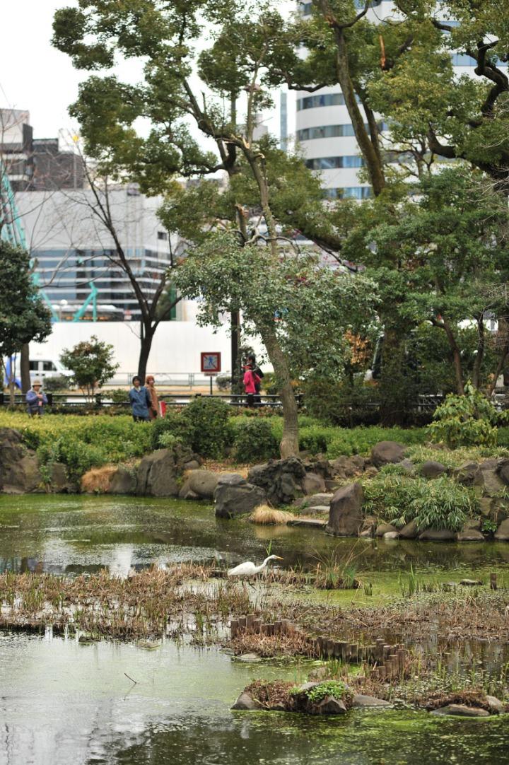 hibiya_park_spring_8226