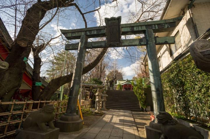 Ichigayakameokahachimangu_8958