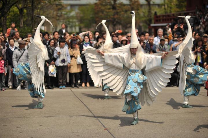 shirasaginomai_asakusa_parade_2442