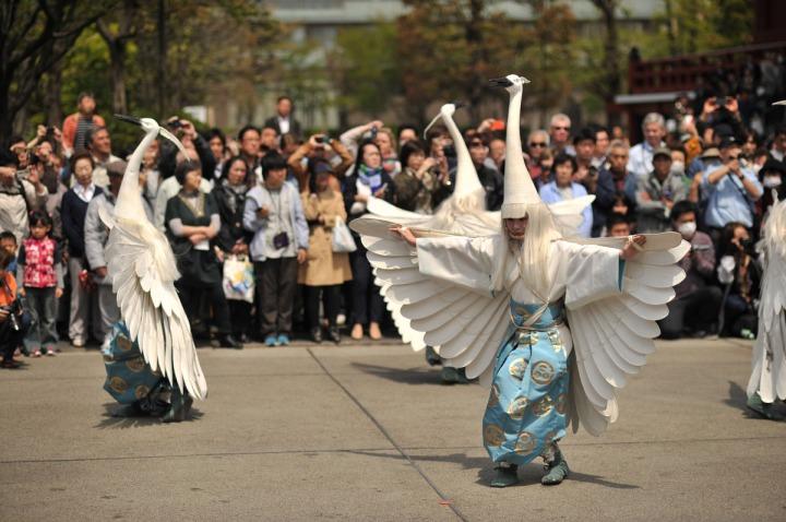 shirasaginomai_asakusa_parade_2444