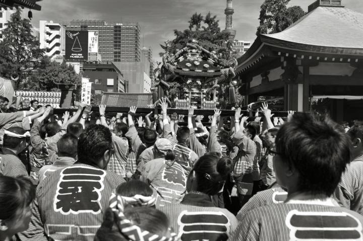sanjamatsuri_asakusa_omikoshi_1110