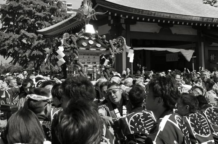 sanjamatsuri_asakusa_omikoshi_1119