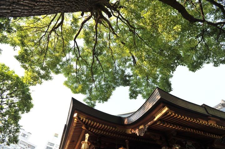yushima_tenjin_matsuri_0157