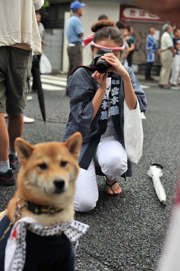 Matsuri_Dog_Kitazawahachiman_9480