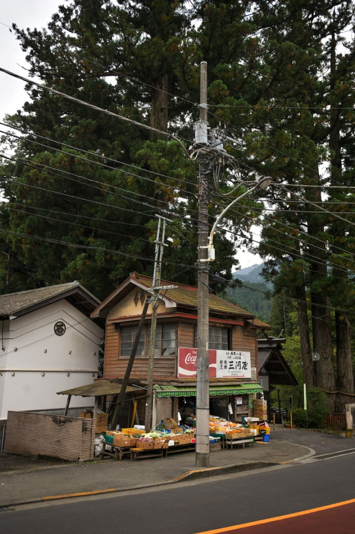 okutama_sanbonsugi_5776