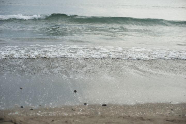 orion_beer_beach_8518