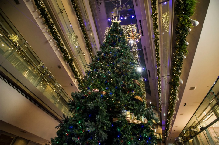 omotesando_hills_Christmas_tree_5502