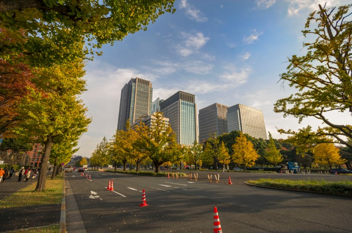 imperial_palace_park_autumn_colors_6710