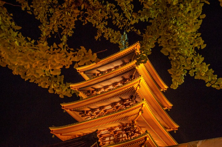 sensoji_night_9023