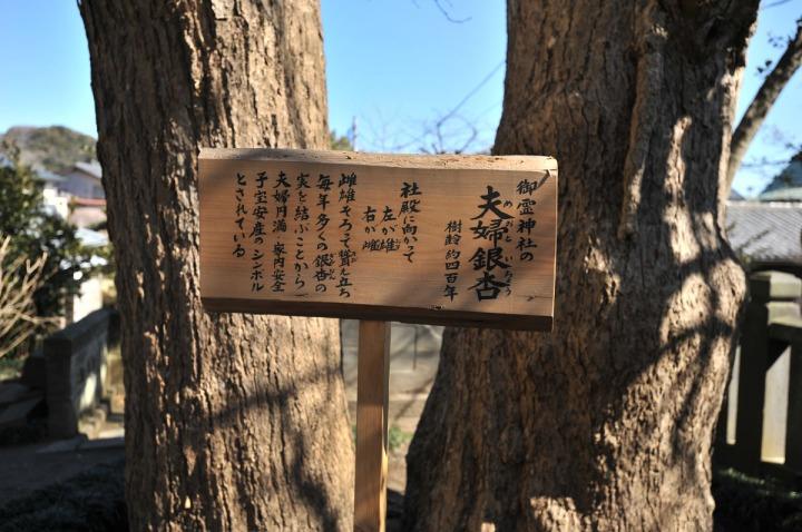 kamakura_goryo_shrine_3875