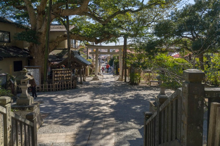 kamakura_goryo_shrine_3885