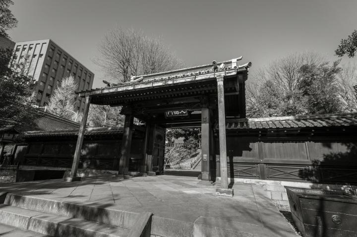 yushimaseido_3626