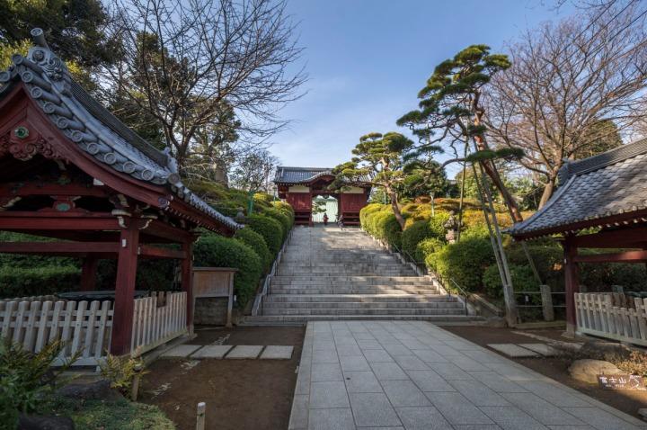 gokokuji_temple_4757