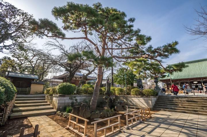 gokokuji_temple_4762