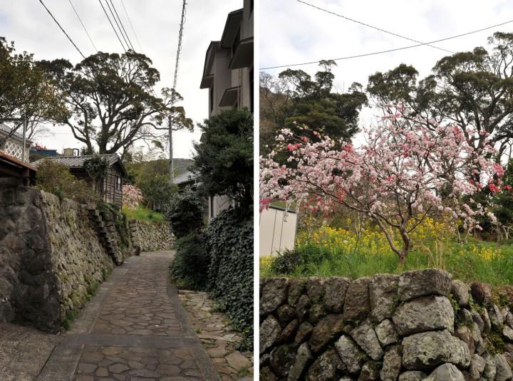 shizuoka_izu_0651