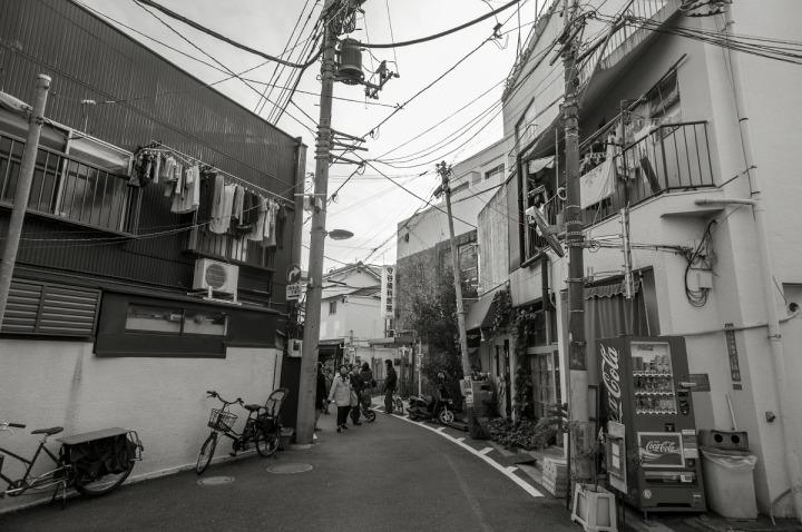 yanaka_hebi_1424