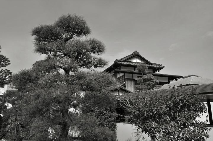 shizuoka_atami_0757