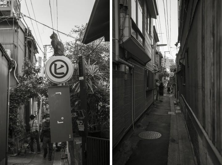 hi_gallery_yanaka_6859