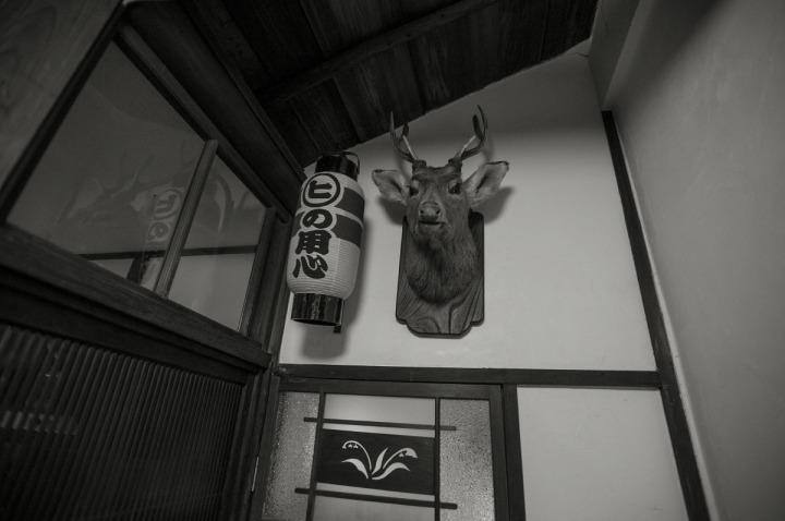 hi_gallery_yanaka_6875