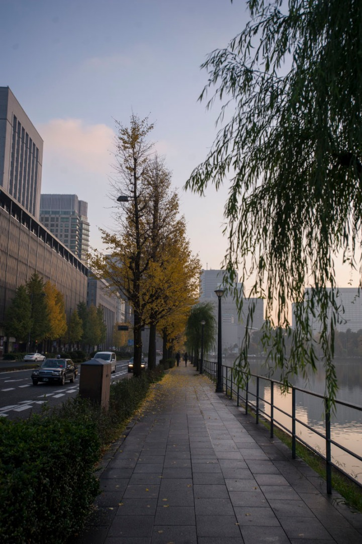 imperial_palace_fog_7123