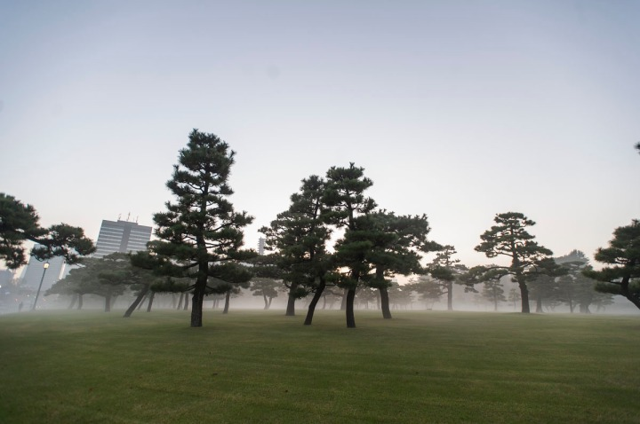 imperial_palace_fog_7231