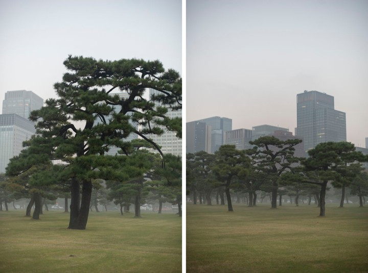 imperial_palace_fog_7282