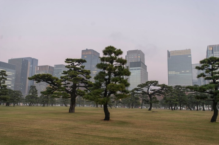 imperial_palace_fog_7315